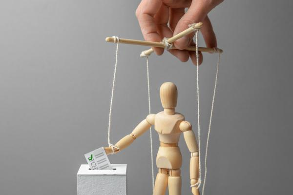 Photo of hand manipulating voting puppet