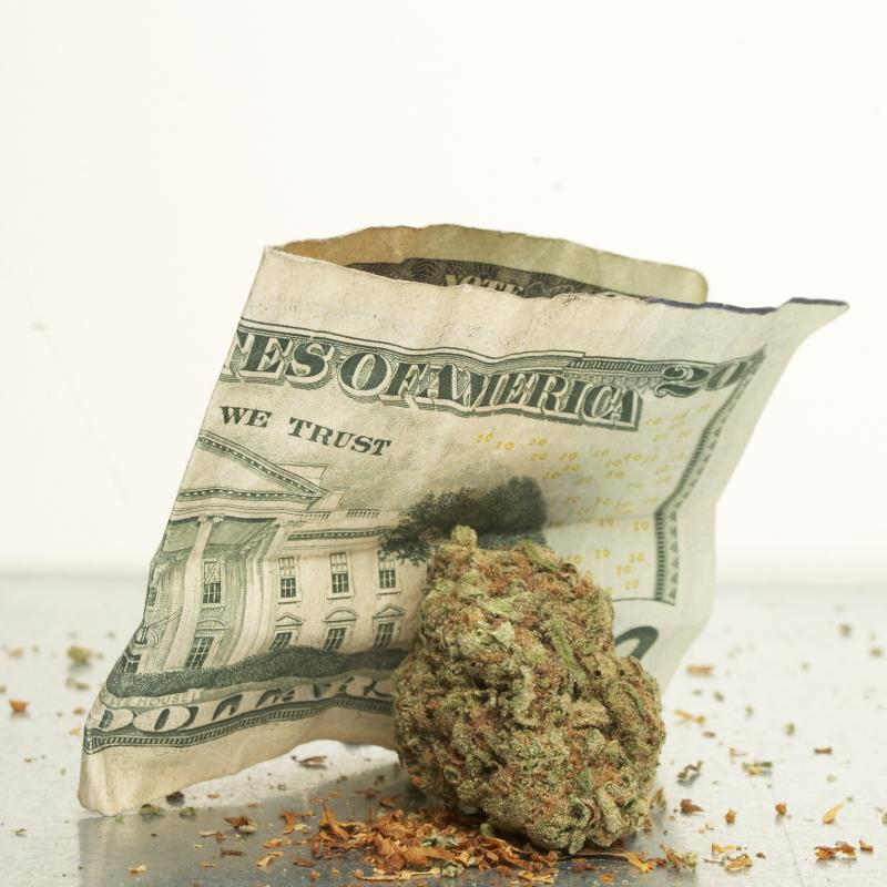 photo of marijuana and money