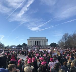 protesters at Lincoln memorial in Washington DC