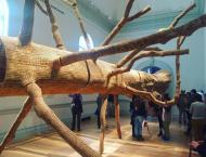"""One of the installation's at the Renwick Gallery's """"Wonder"""" exhibit"""