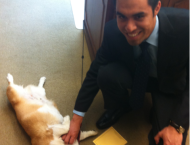 """Former Cal-in-Sacramento Fellow Jose Alvarado playing with California's """"First Dog,"""" Sutter Brown."""